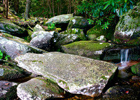 Top of Panther Creek. The water's hidden among the boulders