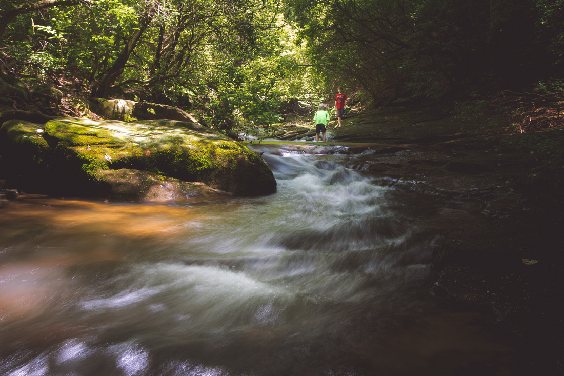 Daniels Creek, Cloudland Canyon